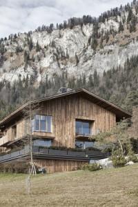 Casa Wiesenhof-Austria-8-arquitectura-domusxl