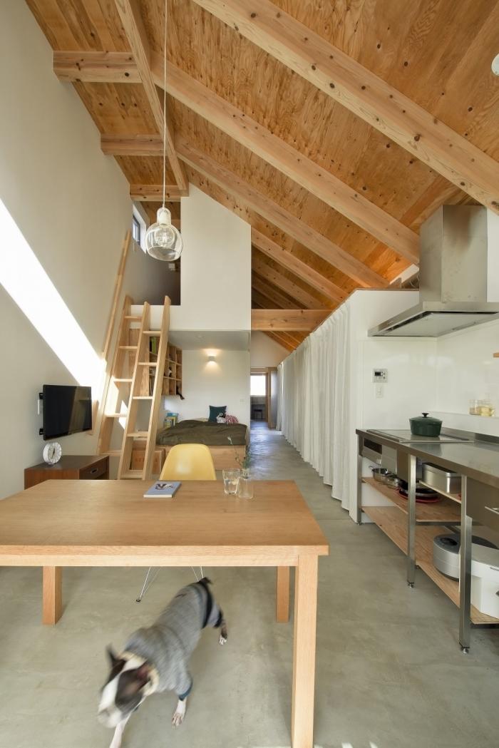 Dogsalon-Japón-4-arquitectura-domusxl