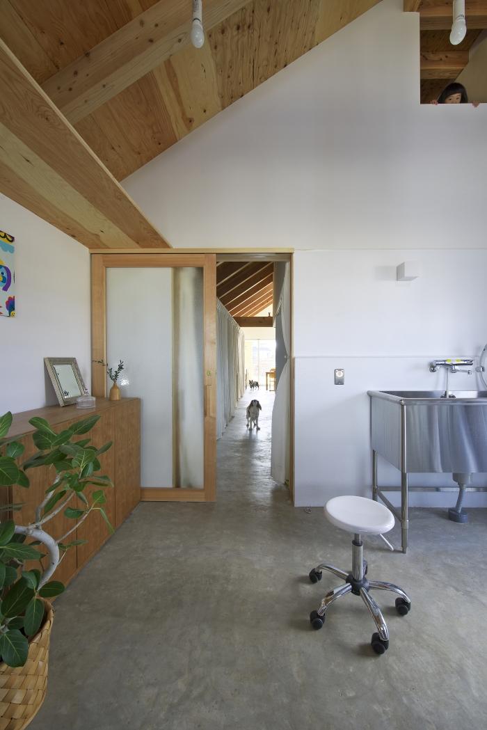 Dogsalon-Japón-5-arquitectura-domusxl