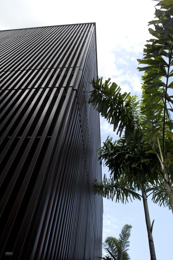 Casa árbol centenario-Singapur-1-domusxl-arquitectura