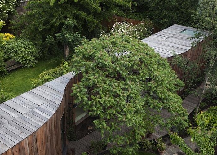 tree-house-domusxl-3