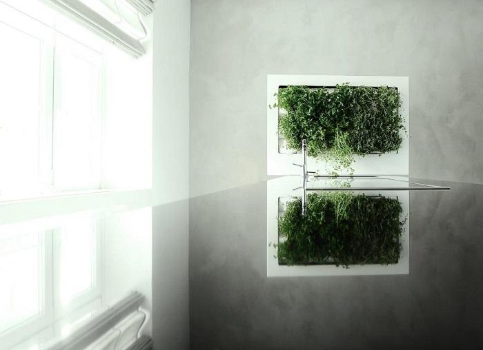 marco-florama-florabo-domusxl-6