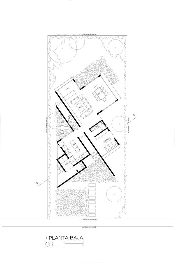 casa-eucaliptos-domusxl-15