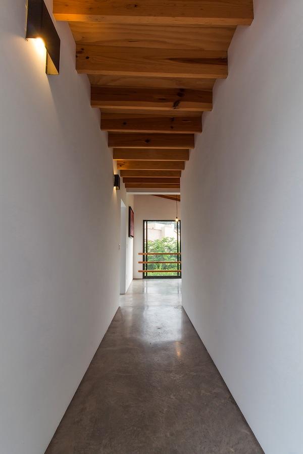 casa-eucaliptos-domusxl-9